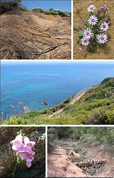 Simpòsium Experiències de Restauració d'Hàbitats i Conservaciói de la Biodiversitat